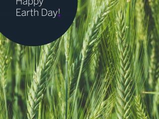 Earth day. Sustainability